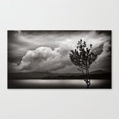 Winter cloudy sky and lonely tree near lake, black and white panorama Canvas Print by kostaspavlis Fine Art Prints, Canvas Prints, Lonely, Clouds, Sky, Black And White, Winter, Artist, Photography