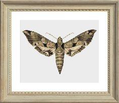 Moth Cross Stitch Pattern