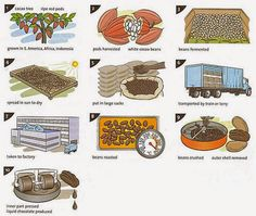 This IELTS Task 1 Process Diagram is about the production of Chocolate Production. In a process you usually have to describe a process of making something. Spanish Chocolate, History Of Chocolate, How To Make Chocolate, Making Chocolate, Ielts Writing Task1, Process Chart, Chocolate Factory, Cacao Chocolate, Best Food Ever