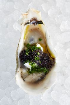 Moscow oyster on half-shell.