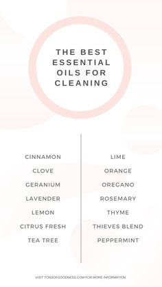 DIY Natural Air Freshener & Disinfectant Spray ⋆ Tons of Goodness