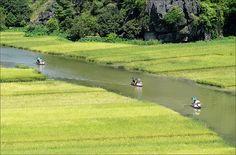 #Ninhbinh #Vietnam