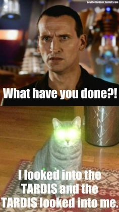 Doctor Who Funny cat pix LOL! i love doctor who. plz check out my doctor who board 😀 The Tardis, Tardis Art, Tardis Blue, Artemis Fowl, Doctor Who Rose Tyler, Supernatural, Doctor Who Funny, Bad Wolf Doctor Who, Doctor Jokes