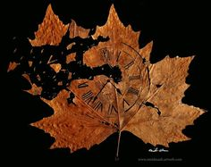 "Leaf Art - Omid Asadi  ""Journey"" - Actual Leaf http://omidasadi.artweb.com/www.leafcuttingart.com/516094_journey-.html"