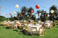 Zoo Wedding- Reception Space