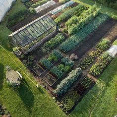 Veg Garden, Vegetable Garden Design, Garden Cottage, Farm Gardens, Outdoor Gardens, Greenhouse Gardening, Gardening Tools, Dream Garden, Garden Planning