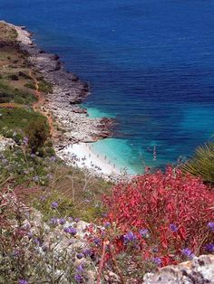 Riserva dello Zingaro, Sicilia Beautiful Places In The World, Wonderful Places, Travel Around The World, Around The Worlds, Places To Travel, Places To Visit, Der Plan, Sicily Italy, Amazing Destinations