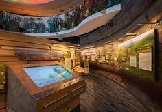 Flint Hills Discovery Center : Permanent Exhibits