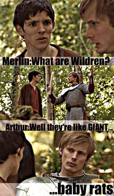 Lol, I love how Arthur took one look at Merlin's freaked out look and, instead of tormenting him further, at least made an attempt at making them sound less terrifying.