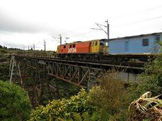 Reisen mit dem Zug in Neuseeland