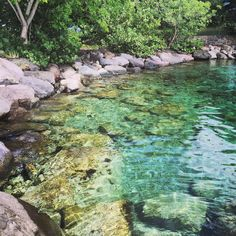 Repost from Instagram ! #WeLike ! #Madinina by @lesjolismoments #pointedubout #madinina #martinique #troisilets #frenchwestindies http://ift.tt/1WgdyXT