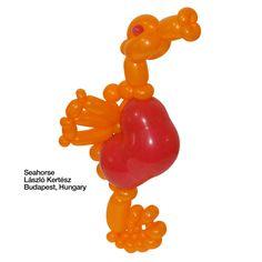 Orange entries Balloon Seahorse László Kertész Budapest, Hungary