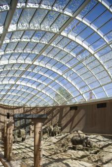 Elephant House - Copenhagen Zoo - with insulating glass OKATHERM from OKALUX - Richard Davies