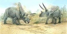 Torosaurus - John Bindon