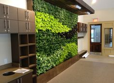 What a cool green wall