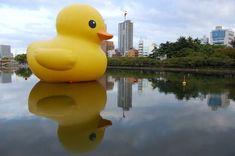 Rubber Duck (Osaka) by Florentijn Hofman