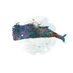 Sky whale #art #print for sale! Hope you enjoy. #design #illustration #whale # tshirt https://society6.com/benjackson