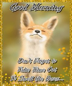 A cute fox taking time out to smell the flowers. A cute good morning card. Free online Good Morning - Take Time Out ecards on Everyday Cards Cute Good Morning Quotes, Good Morning Cards, Good Morning Gif, Good Morning Greetings, Morning Wish, Morning Hugs, Morning Coffee, Healing Wish, Wednesday Hump Day