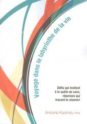 Livre reçu : Voyage dans le labyrinthe de la vie (Antoine Kazindu, fms)
