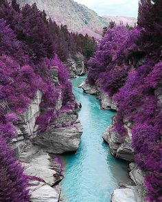 Tag someone you would take a ride along this river. Unknown credits  Via @earthfever