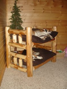 bunk beds for dogs - can't help but wonder if the dog that sleeps on the top bunk is gonna break a hip one day when he wakes up and forgets that he's 3 feet above the ground ;-/