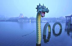 loch ness sea dragon - Google Search