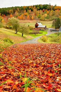 visitheworld:  Autumn colors at Sleepy Hollow Farm in Vermont, USA (by nkeppol).
