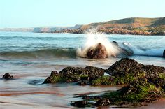 Canvas print of A wave crashes into the rocks at Coldingham Sands, Scottish Borders The Rock, Walls, Canvas Prints, Earth, Places, Sweet, Nature, Travel, Outdoor