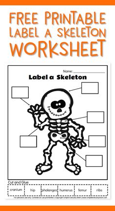Human Body Activities For Kids Skeletal System Activities, Skeletal System Worksheet, Human Body Activities, Homeschool Kindergarten, Kindergarten Worksheets, Worksheets For Kids, Free Printable Worksheets, Printable Labels, Free Printables