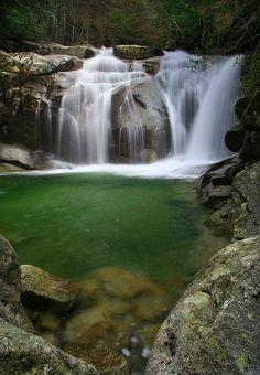 Corsica - Cascades et Canyons - Camera - Commune : Zicavo. Bassin : Taravo.(Ruisseau de Molina).(Corse du Sud)
