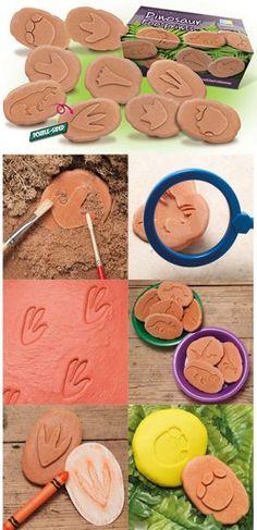 Dinosaur Footprints Footprints
