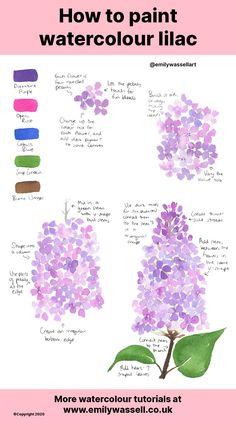 Watercolor Beginner, Watercolor Art Lessons, Watercolor Paintings For Beginners, Watercolor Tips, Painting Lessons, Watercolour Painting, Watercolors, Flower Art Drawing, Flower Drawing Tutorials