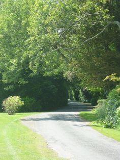 Road to Ballymaloe