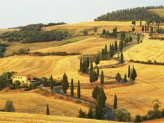 Italian countryside of Val-d'Orcia after the harvest