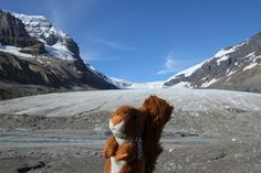 https://flic.kr/p/xAkEJW   Glacier Athabasca   Athabasca Glacier #mascot #mascotte #travelingmascot #travellingmascot #DexterLEcureuil #DexterTheSquirrel #peluche #stuffedanimal #Canada