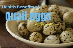 45 Coturnix Quail Eggs Eating Farm Fresh Healthy  ***SUPERFOOD***