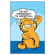 Garfield quote I'm not overweight, I'm undertall