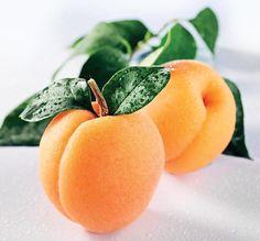 Apricots.jpg 911×846 pixelů