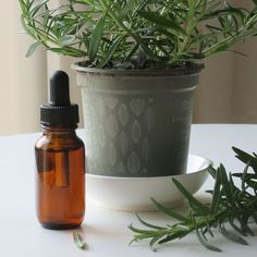 Researchers from the Meikai University in Japan showed that smelling lavender and rosemary essential oil for 5 minutes decreases the stress hormone cortisol. 22 healthy volunteers were involved in this study. Source: https://www.ncbi.nlm.nih.gov/pubmed/17291597