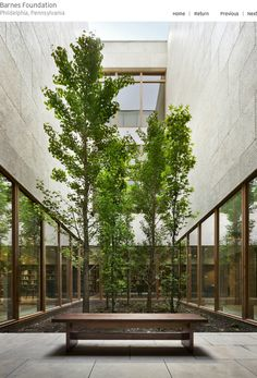 The Barnes Foundation - Tod Williams Billie Tsien Architects Atrium Design, Courtyard Design, Garden Design, House Design, Indoor Courtyard, Internal Courtyard, Indoor Garden, Architecture Design, Garden Architecture