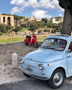 Amazon.com: car accessories. Vespa Lambretta ...