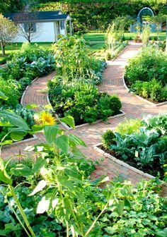 Garden pathway idea.