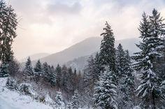 First snow Winter Mountain, First Snow, Mountain Landscape, Romania, December, Mountains, Nature, Travel, Viajes