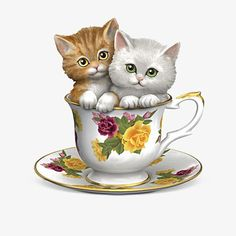 Cuddly kittens sweeten up China-inspired teacup with bright, twinkling eyes and hand-etched fur detailing. Hand-brushed golden trim and glaze coating. Kitten Love, I Love Cats, Cute Kittens, Cats And Kittens, Kitty Cats, Teacup Kitten, Baby Animals, Cute Animals, Image Chat