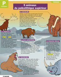 5 animaux du paléolithique supérieur