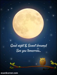 Animated Goodnight greetings  More ecards at http://ecardcorner.com Good Night Sleep Tight, Good Night Image, Good Night Moon, Night Time, Good Night Quotes, Good Morning Good Night, Goodnight Quotes Sweet, Good Night Greetings, Good Night Messages