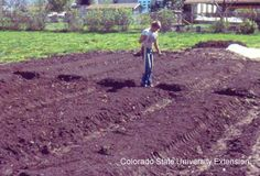 Backyard Farming: Wide Row a Go Go. Pros and cons of wide row gardening. Should try with the fall lettuce and spinach.