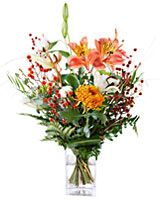 Flowers of the month! I would love to receive beautiful flowers every month!!!