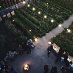 A rooftop garden in the middle of Copenhagen. Isn't it just amazing? Such a fantastic evening, thank you so much to everyone involved! And stay tuned for more photos! #oakthenordicjournal #brostecph