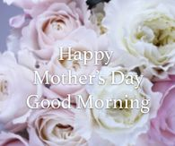 White And Purple Roses - Happy Mother's Day, Good Morning Happy Mothers Day Friend, Mothers Day Roses, Happy Mothers Day Pictures, Mothers Day Gif, Happy Mother Day Quotes, Mother Pictures, Mother Day Wishes, Mothers Day Weekend, Friend Pictures